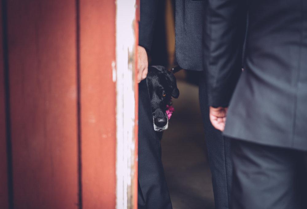 lindsay_markus_wedding_blog32.jpg