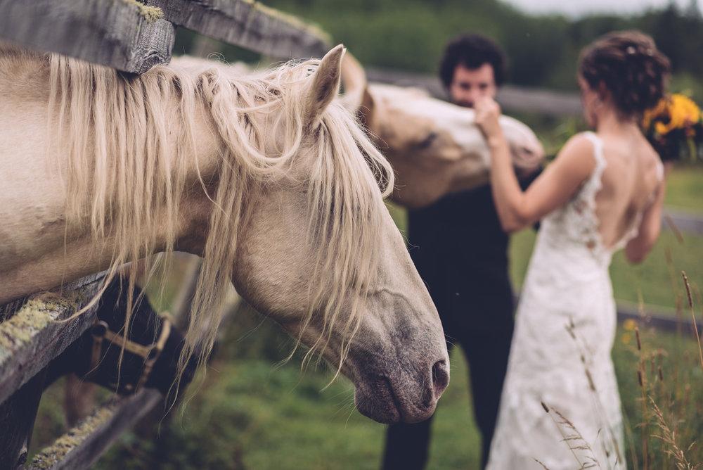 kendal_richard_wedding_blog29.jpg