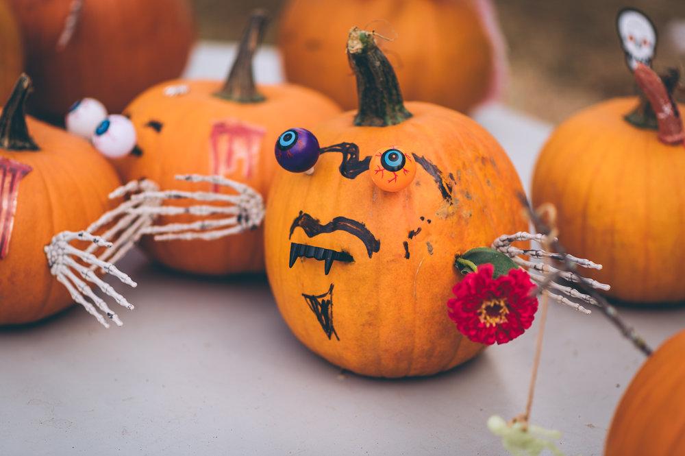 belluzfarms-pumpkinmania-2018-blog-17.jpg