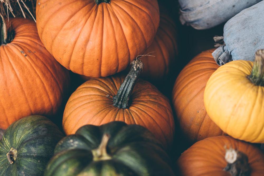 belluzfarms-pumpkinmania-2018-blog-27.jpg
