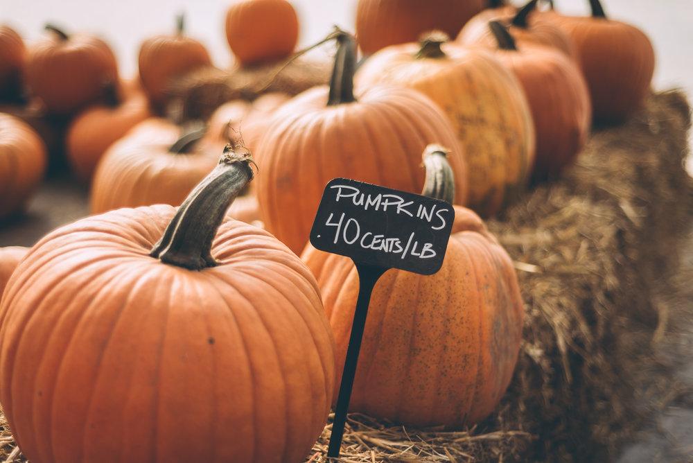 belluzfarms-pumpkinmania-2018-blog-35.jpg