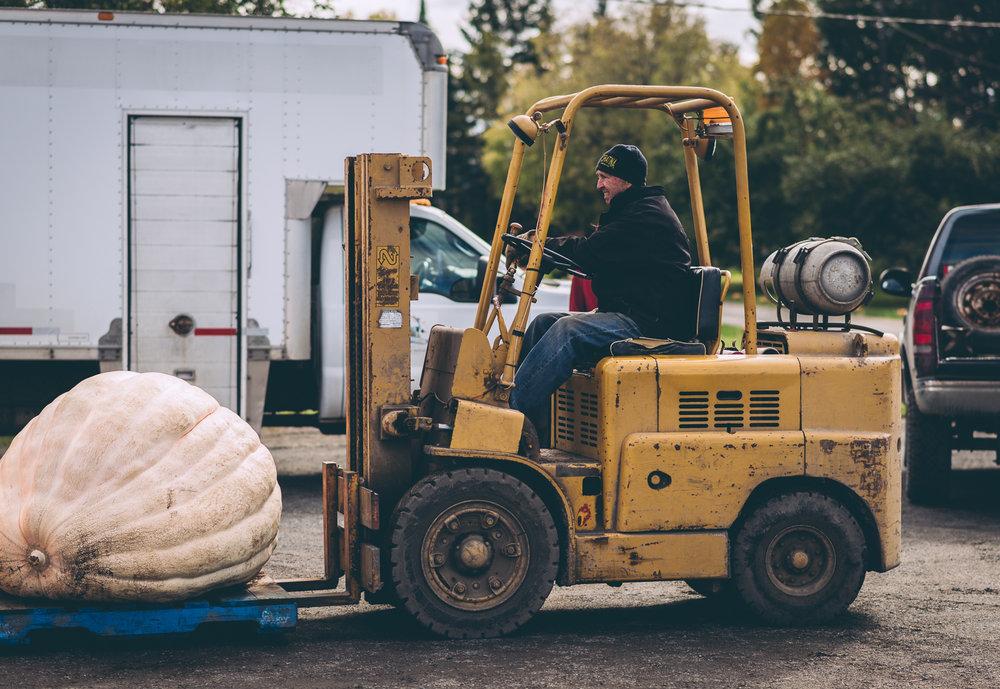 belluzfarms-pumpkinmania-2018-blog-34.jpg