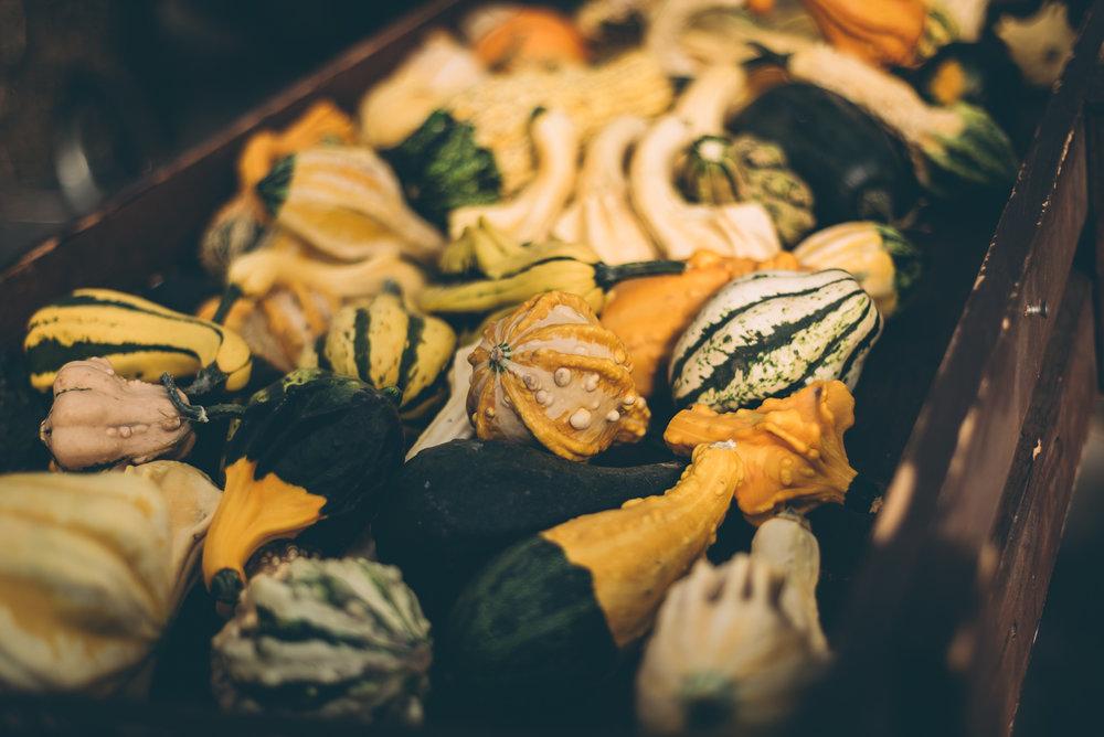 belluzfarms-pumpkinmania-2018-blog-47.jpg
