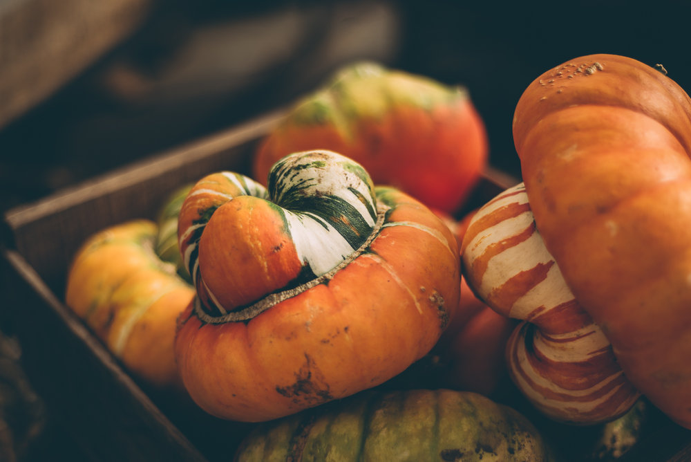 belluzfarms-pumpkinmania-2018-blog-60.jpg