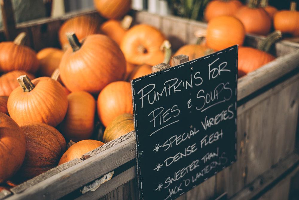 belluzfarms-pumpkinmania-2018-blog-65.jpg