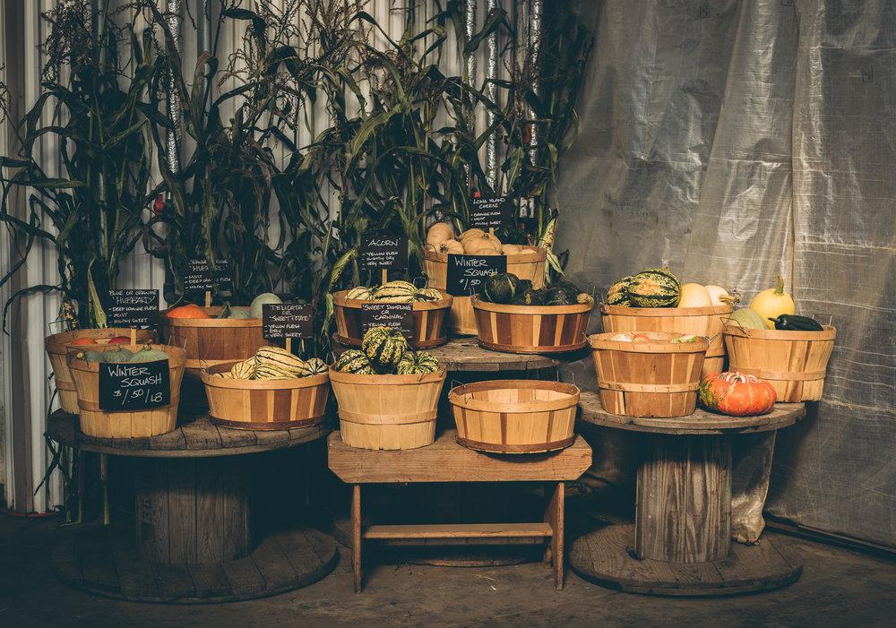 belluzfarms-pumpkinmania-2018-blog-64.jpg