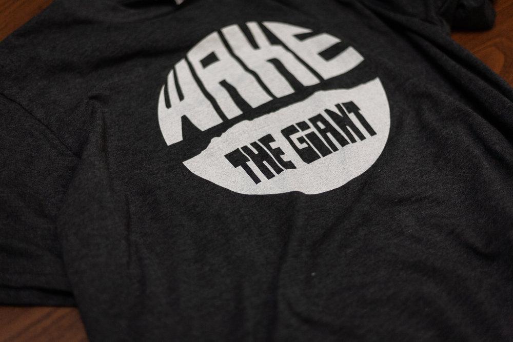 wake-the-giant-launch-blog-1.jpg