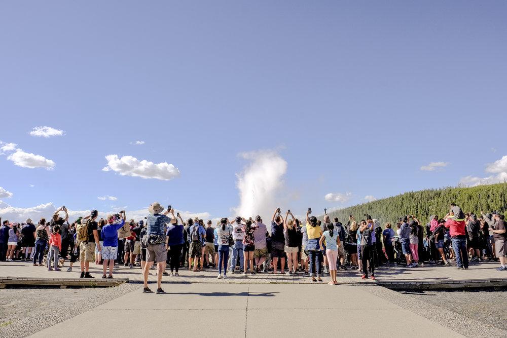 BBP-Yellowstone-10.jpg