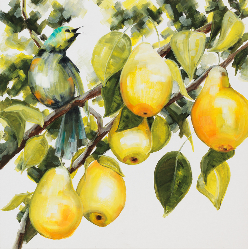In a Pear Tree, 2016