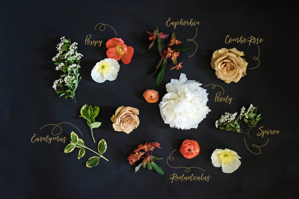"""Lace and Lilies social media content design """"Floral Education Series"""""""