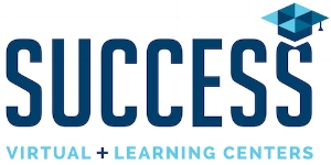 Success VLC Logo
