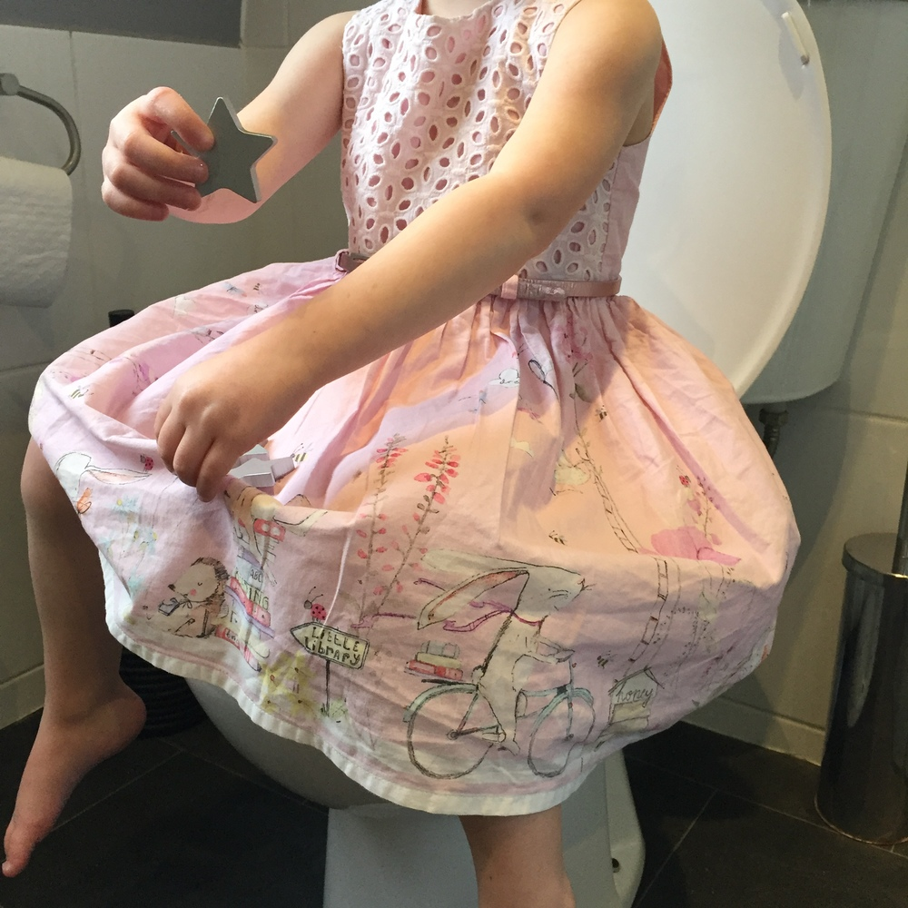 The Fairy Reward Box Potty Training