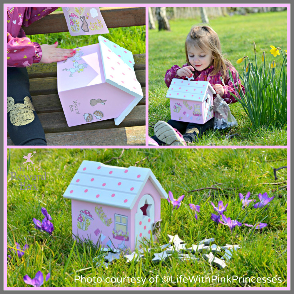 The Fairy Reward Box by Life With Pink Princesses