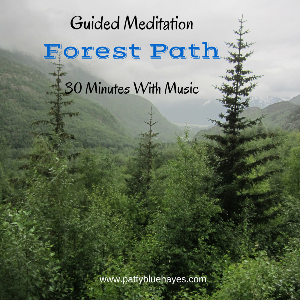 meditation forest path.jpg