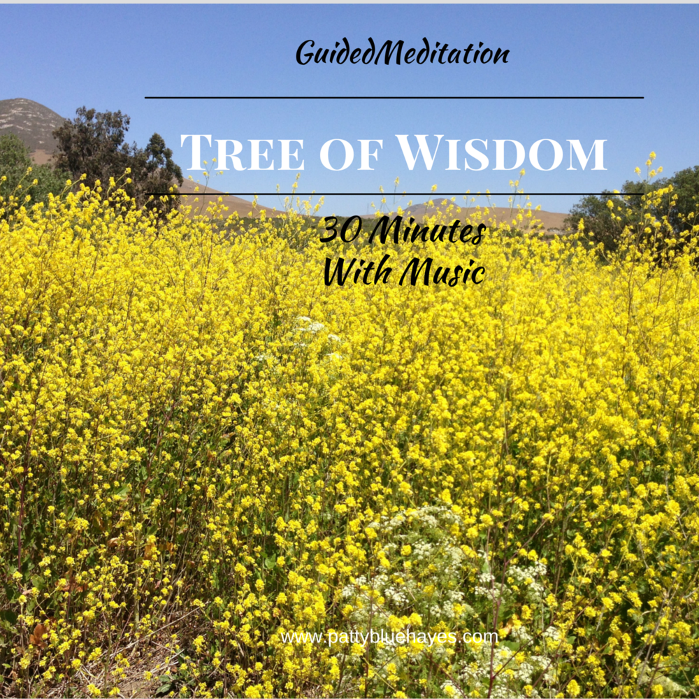 meditation tree of wisdom