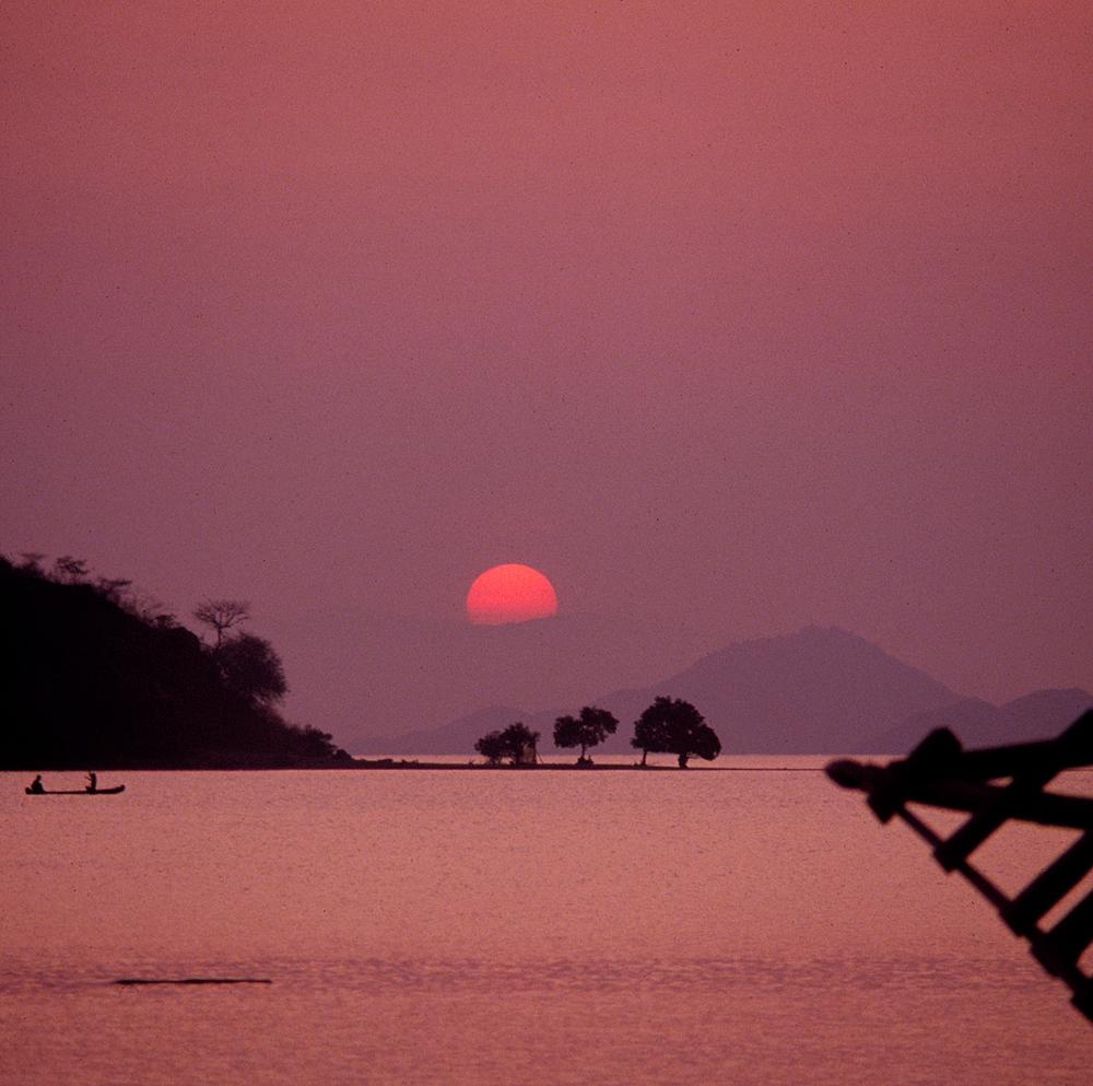 sunsetfFores.jpg