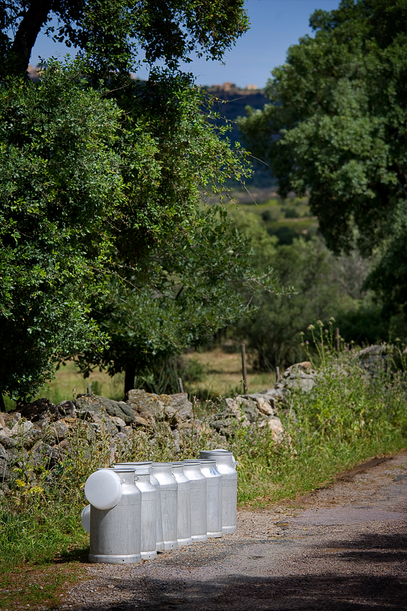 Corcica scenics -174.jpg