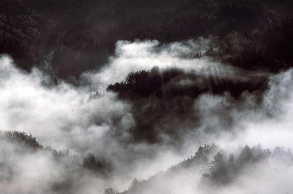 fog1a.jpg