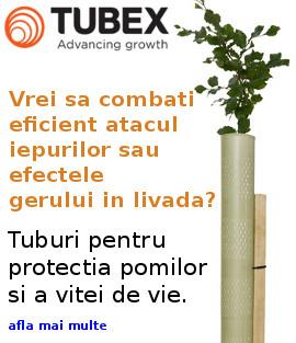 tubex_banner.jpg