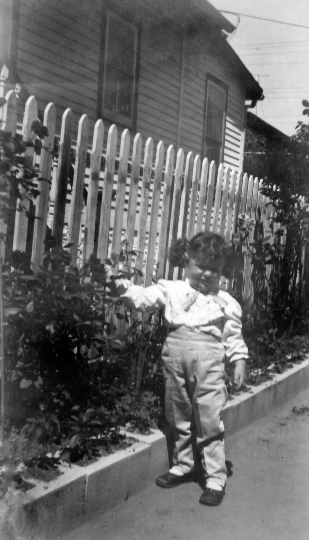 Me Pointing To My Grandmother'd Roses Along Our Driveway Apx 1958