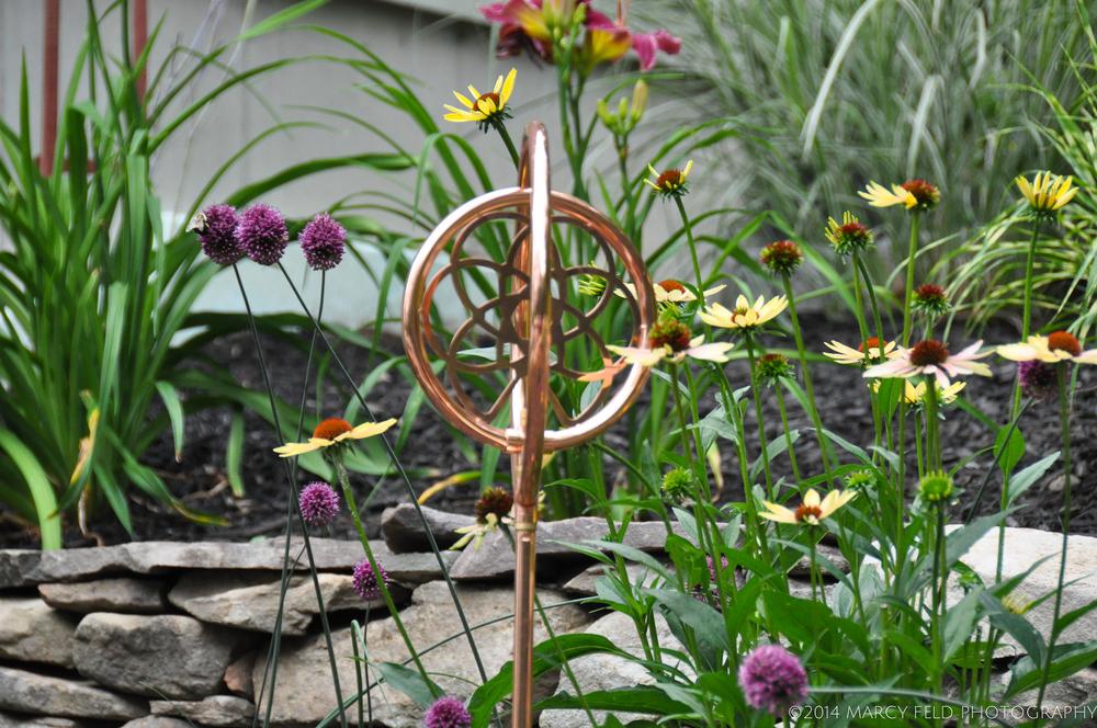 Allium sphaerocephalon 'Drumsticks' & Echinacea 'Aloha'