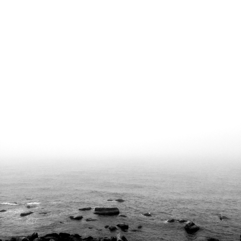 Coastline, Cape Cod, MA
