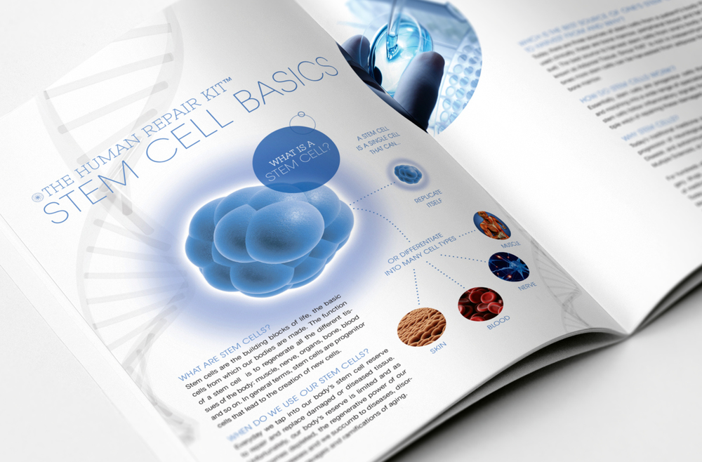 StemGenex Brochure - Stem Cell Basics educational spread