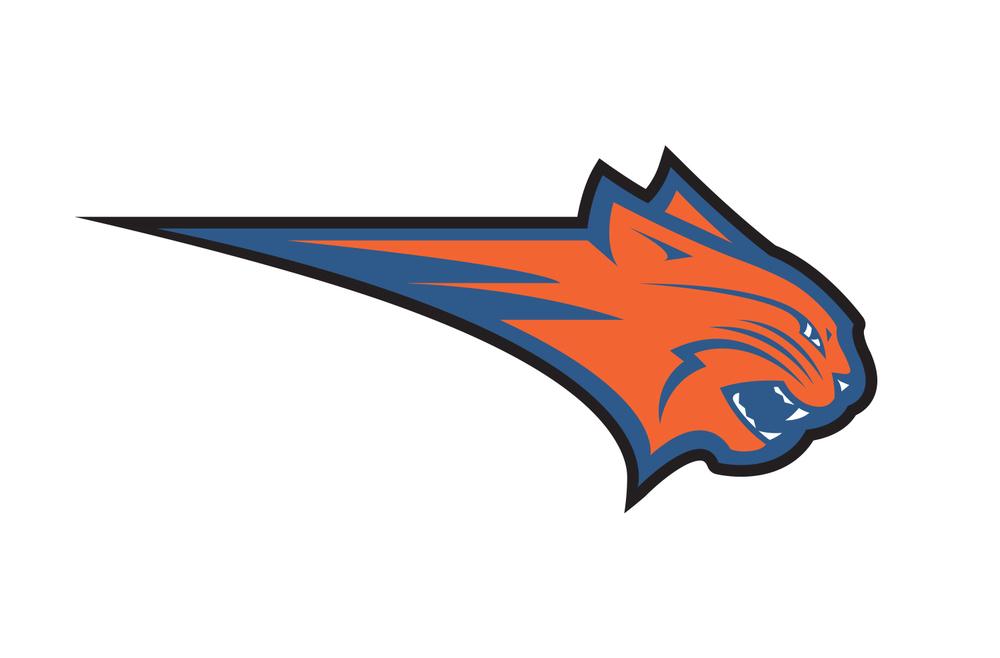 Charlotte Bobcats partial logo