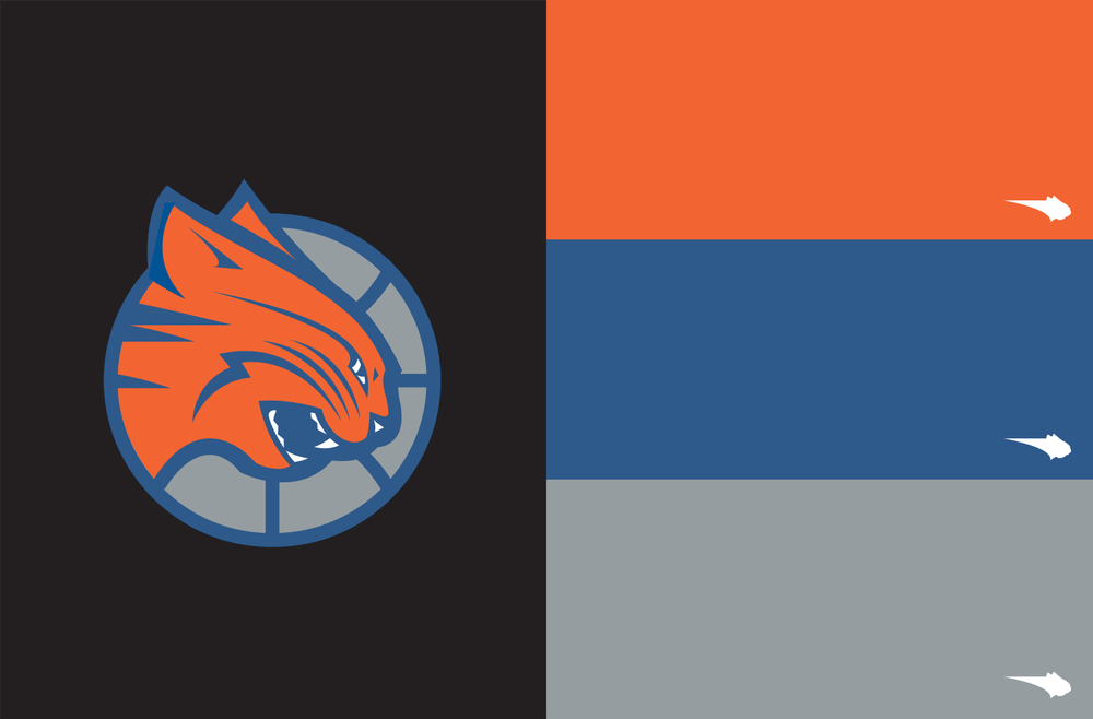Charlotte Bobcats secondary logo and colors