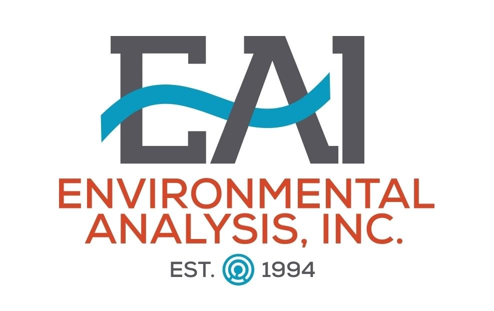 EAI Logo Design