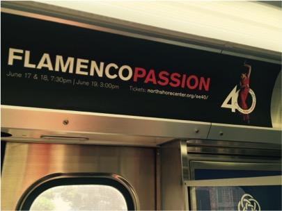 Flamenco Passion CTA Ad