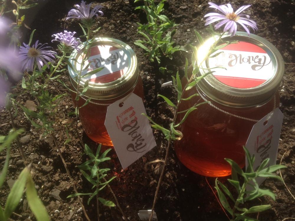 Hunter Honey Bee Honey