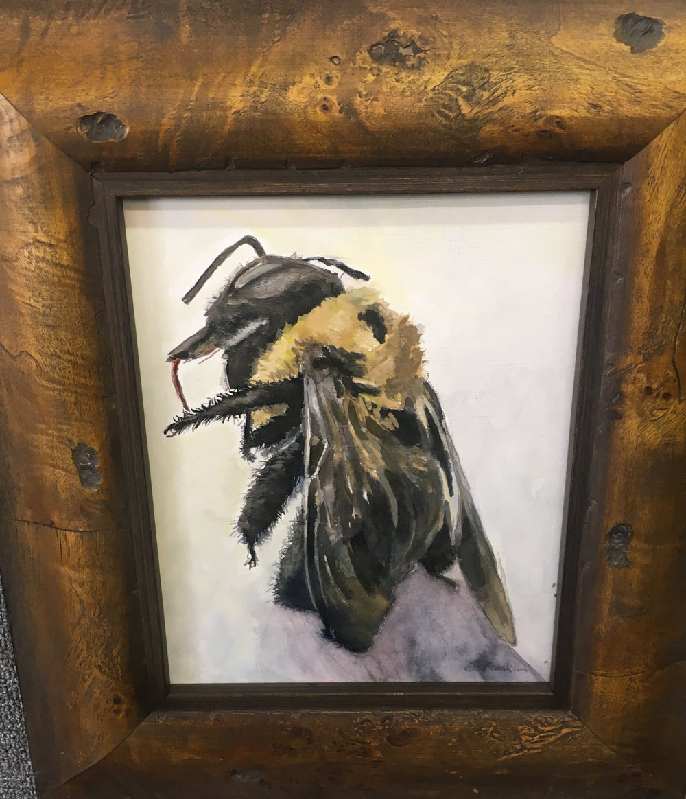 Item #138    Ellen Franklin    Carpenter Bee   Oil on Canvas, 16 x 14       Gannon Art Center – Chattanooga, TN   Opening Bid $325    Minimum Raise $25       Ellen Franklin   A native Chattanoogan, Ellen has been creating art in some form or fashion her entire life. Beginning with a class in watercolor from Jim Wright, she has continued to stretch beyond the confines of a single medium and creates works in various combinations, including unconventional ones such as coffee, concrete, and wax. She is always looking  for new ways to express her appreciation of the forms and structures found in nature, using color, texture and any combination of media to achieve the feeling she is after. Ellen is a member of the Chattanooga artist group, Artists on the Loose.
