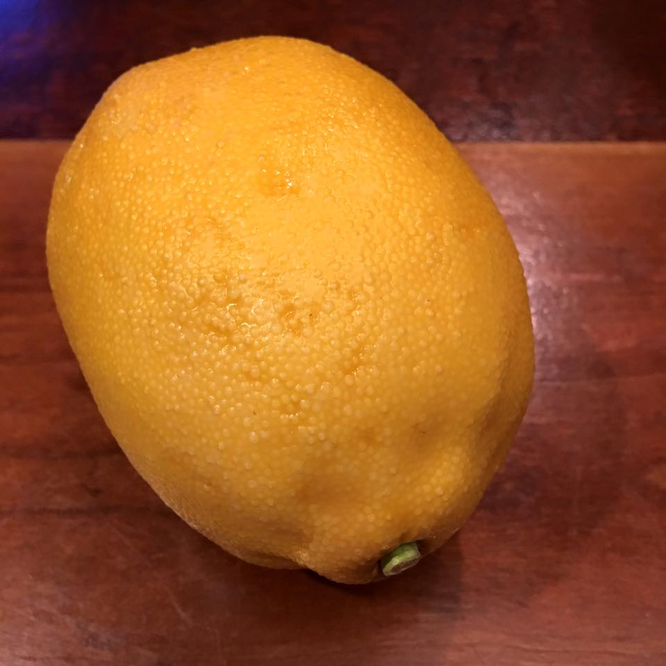 When life gives you lemons, buy a fake lemon for a dollar to celebrate.