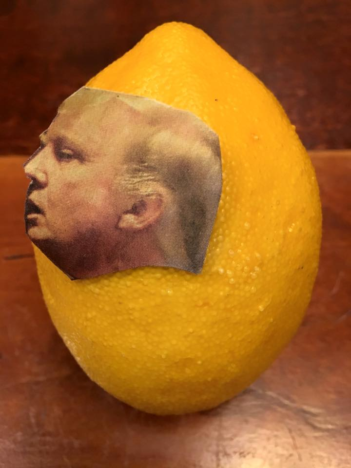 """1.20.17 And now for the adventures of the Great Lemon... """"Mr. Lemon, Show us your taxes!"""" """"Can't do it. Hands too small. Sad."""" #LemonLaw"""