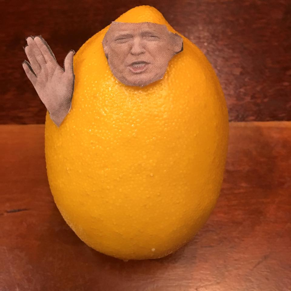"1.21.17   The Great Lemon Oath...  ""I swear there were 1.5 million at my inauguration, if you count all my lies.""   #Lemonlaw ,  #Squeezethelemon ,  # Zesty"