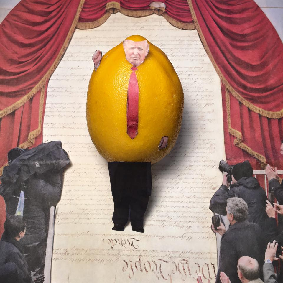 "1.23.17 Another installment of the Great Lemon Installed... ""Let me tell you people, I love the Constitution. The First Amendment–Tremendous. It says the government shall have no limit on free speech. That means I can say whatever I want. Tremendous."" #Lemonlaw, #Squeezethelemon, #Zesty"