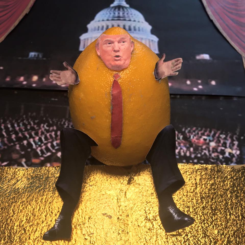 "2.1.17  The Lemon Builds...  ""I will build a great wall – and nobody builds walls better than me, believe me – and I will build it very inexpensively. I will make it out of gold. Shiny, shiny gold. I will build a great, great wall and I will make Congress pay for it. The wall will be in Congress. It will go down the aisle, collecting money. On one side will be the Democrats, on the other side will be the Republicans. It will be a bipartisan wall. Everybody will love the wall. Congress will pay for it, mark my words.""   #Lemonlaw   #Squeezethelemon   #Zesty  #divestdonald"