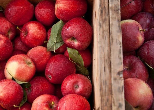 Apples+in+crate-34.jpg