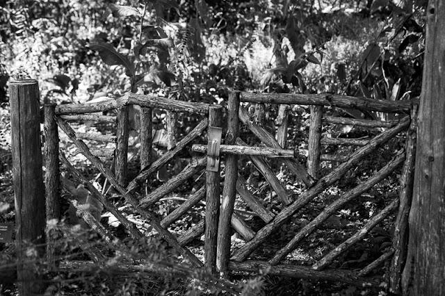 Garden+gate.jpg