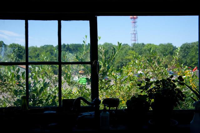 window-11.jpg