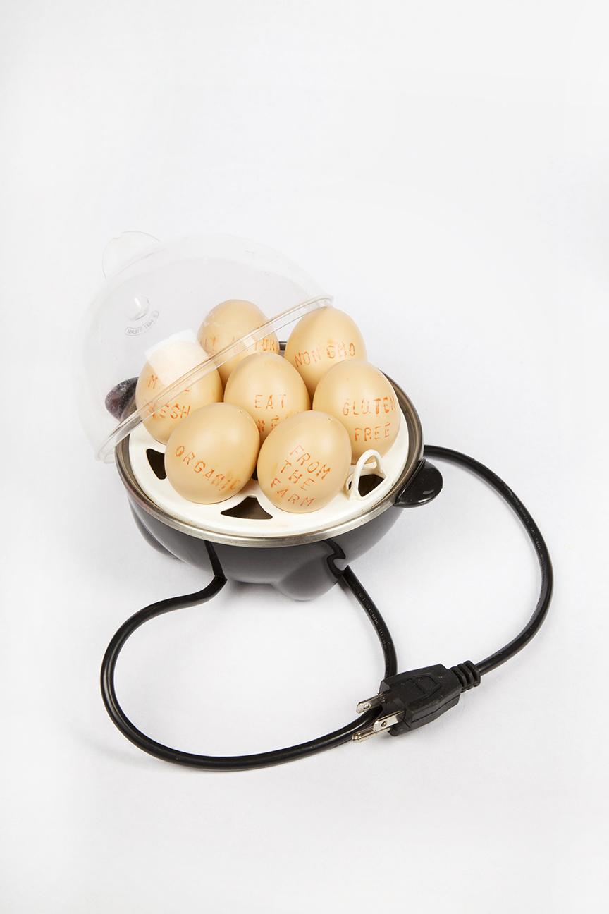 egg boil-1-small.jpg