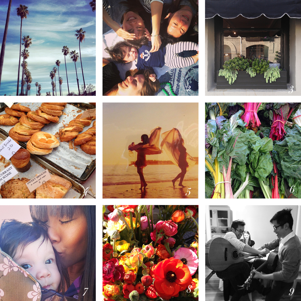 1 / San Jose on my run 2 / Grandma, Auntie, Mommy and Baby 3 / Window boxes at Lu Lu Pom 4 / Bread from The Acme Bread Company 5 /Michelle Alena Magnoli Photography6 / swiss chard at the Cal Ave Farmers Market 7 / me and geneva 8 / flowers from Thomas Farmat the Cal Ave Farmers Market 9 / my talented brothers showing off only one of their many talents