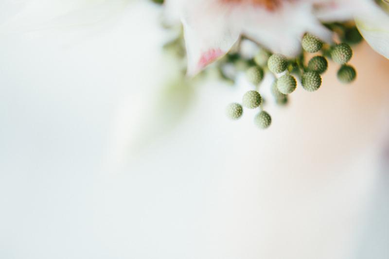 Kathryn Yee- AE Stelzer- 800 pixels-44.jpg