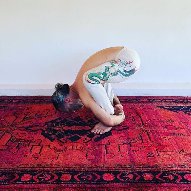 Golden tortoise #shadowyoga #hathayoga #yoga #sayulita