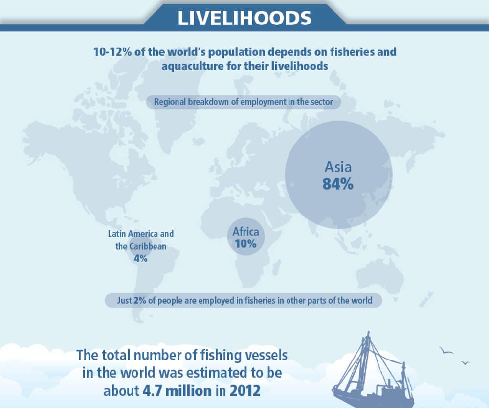 The state of world fisheries and aquaculture 2014 francisco blaha however the report warns that to continue to grow sustainably aquaculture needs to become less dependent on wild fish for feeds and introduce greater sciox Gallery