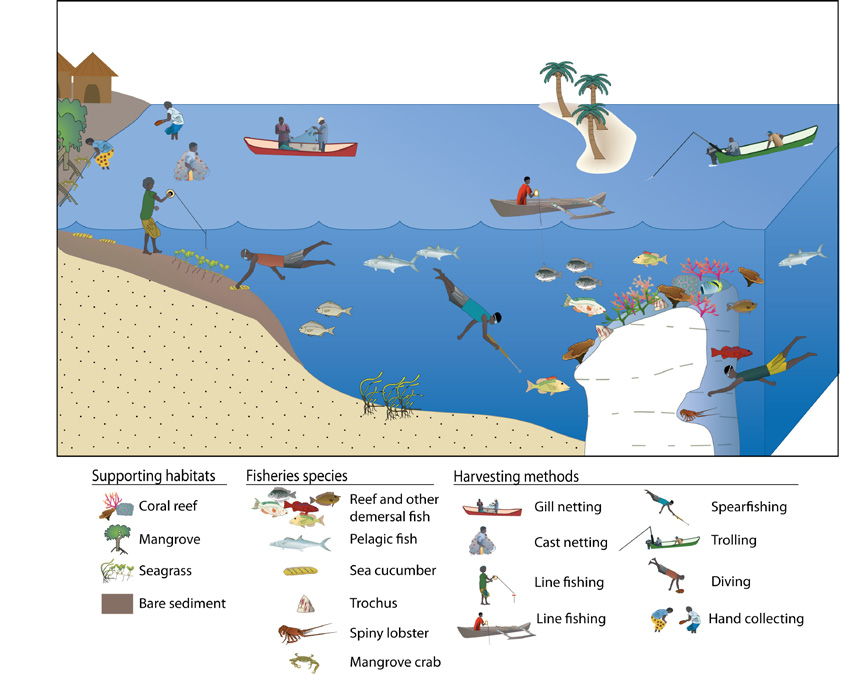 The range of coastal fisheries activities in the tropical Pacific, and the habitats that support them.