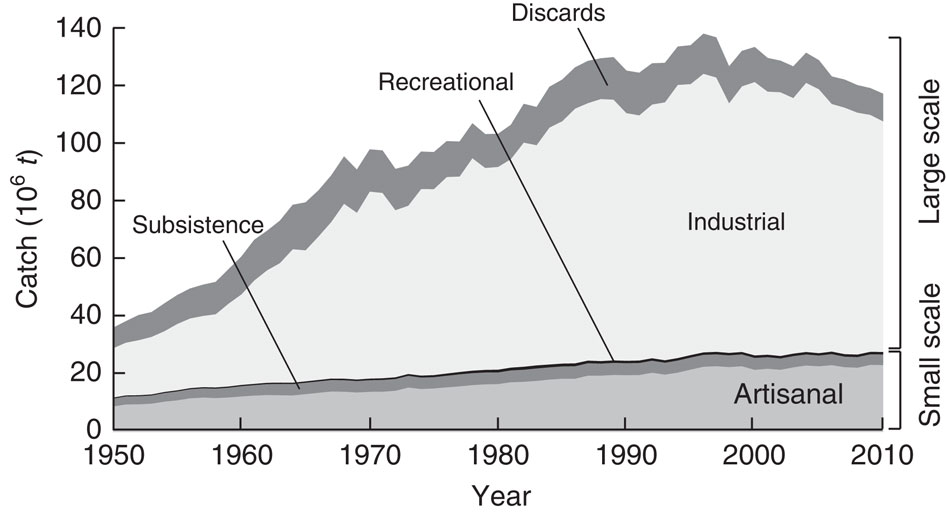 Reconstructed catches for all countries in the world, plus High Seas, by large-scale (industrial) and small-scale sectors (artisanal, subsistence, recreational), with discards (overwhelmingly from industrial fisheries) presented separately.