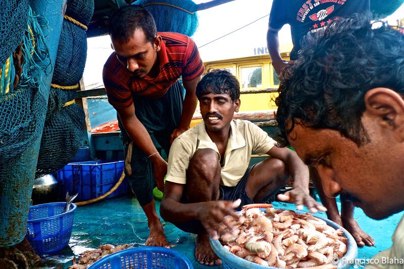 Fisherman in Dharma (India)