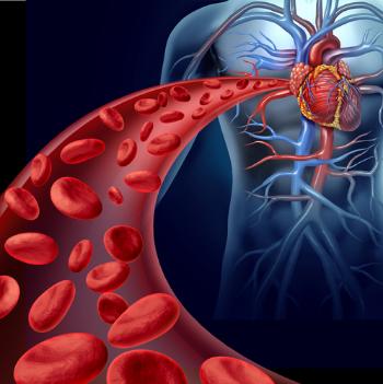 Circulation of blood through body